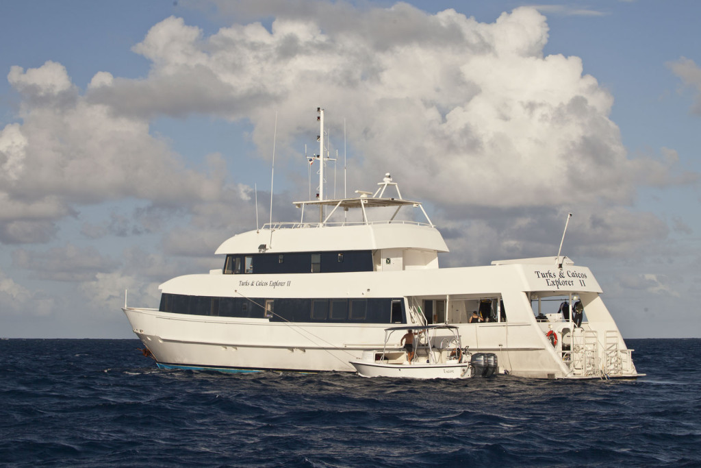 Ship Turks & Caicos Explorer II with Cheesemans' Ecology Safaris
